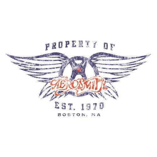 Aerosmith Wings Greeting Birthday Card Any Occasion Album Cover Fan Official