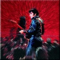 Elvis Presley Metal Fridge Magnet Shine Album Fan Gift Official