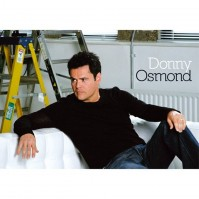 Donny Osmond On Couch Sofa Photograph Postcard Picture Image Fan Gift Official