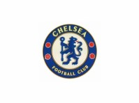 Chelsea FC Football Club Crest Badge 3D Rubber Fridge Magnet Fan Gift Official